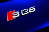Audi-SQ5-TDI-22