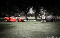 Lamborghini-Aventador-on-ADV.1-Wheels-11